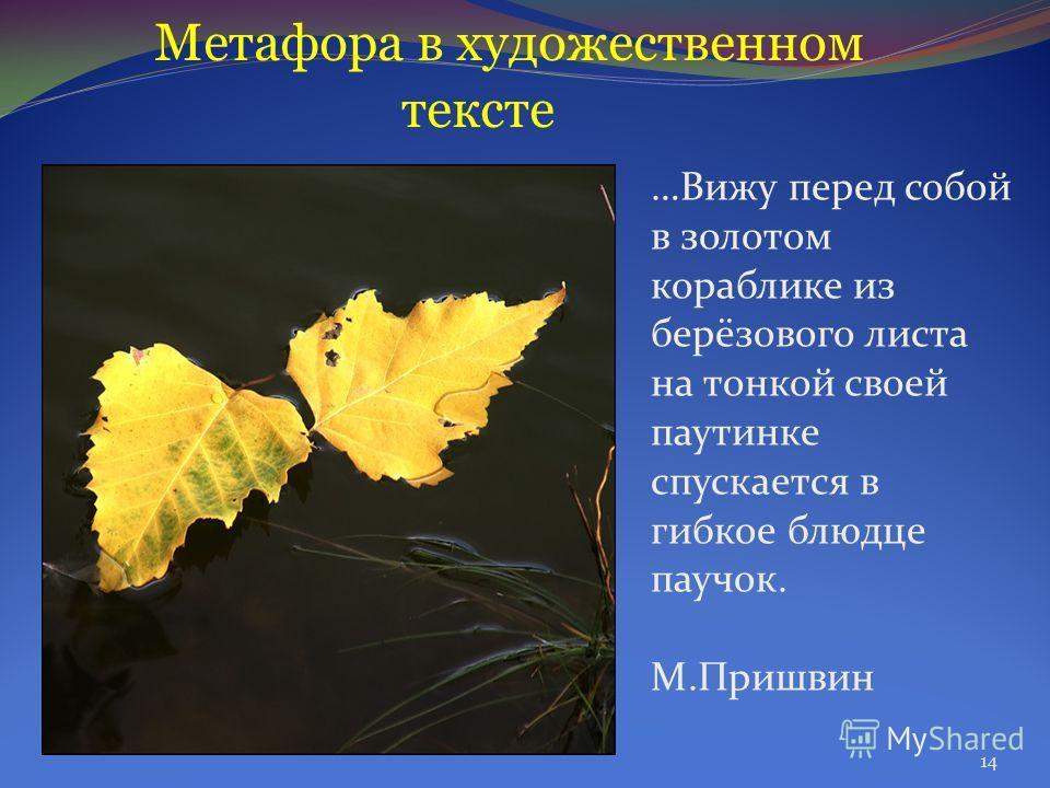 Метафора в художественном тексте …Вижу перед собой в золотом кораблике из берёзового листа на тонкой своей паутинке спускается в гибкое блюдце паучок. М.Пришвин 14