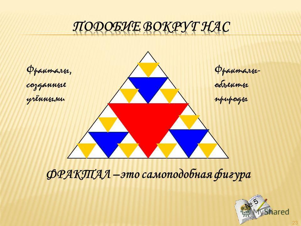 23 ФРАКТАЛ –это самоподобная фигура 5 Фракталы, созданные учёнными Фракталы- объекты природы