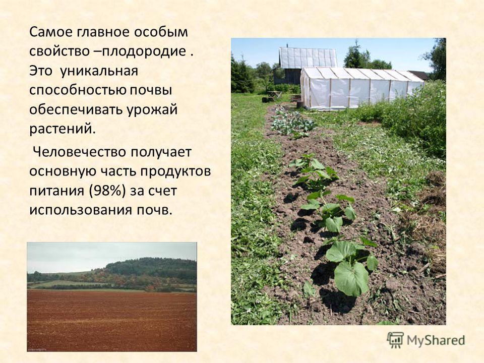 Самое главное особым свойство –плодородие. Это уникальная способностью почвы обеспечивать урожай растений. Человечество получает основную часть продуктов питания (98%) за счет использования почв.