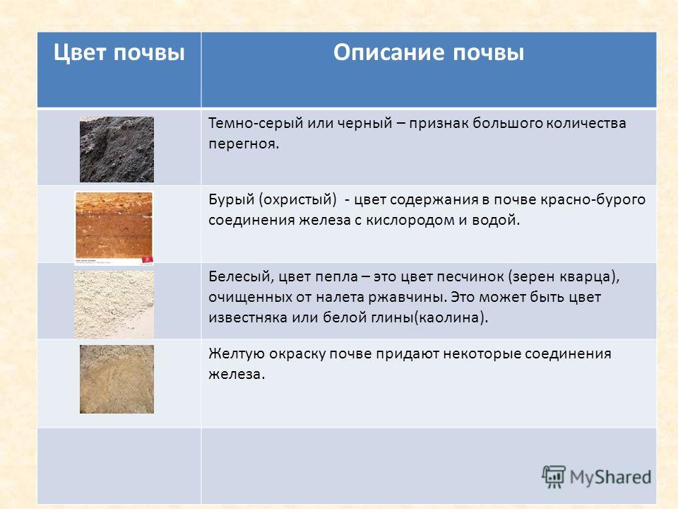 Цвет почвыОписание почвы Темно-серый или черный – признак большого количества перегноя. Бурый (охристый) - цвет содержания в почве красно-бурого соединения железа с кислородом и водой. Белесый, цвет пепла – это цвет песчинок (зерен кварца), очищенных