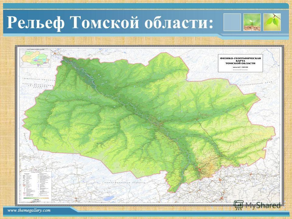 www.themegallery.com Рельеф Томской области: