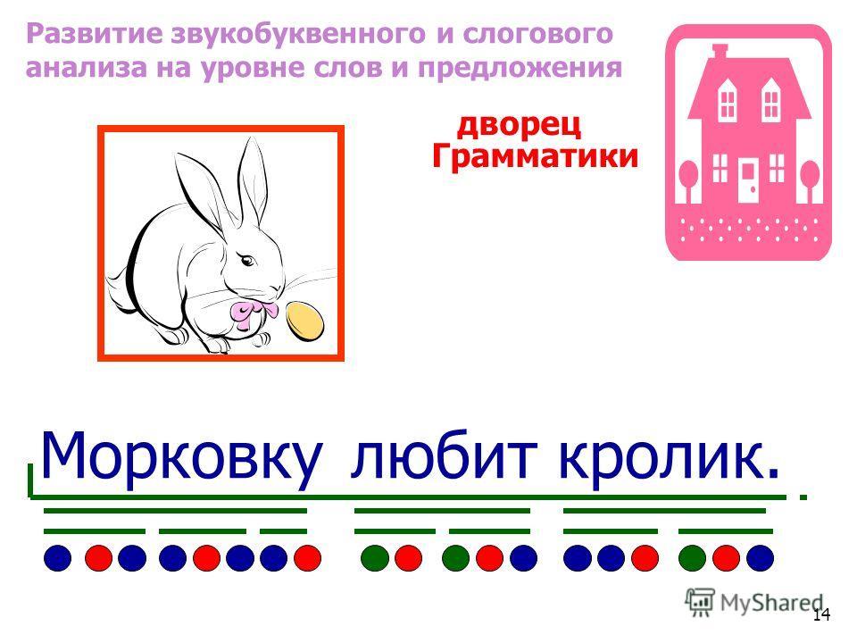 Развитие звукобуквенного и слогового анализа на уровне слов и предложения дворец Грамматики Морковку любит кролик. 14