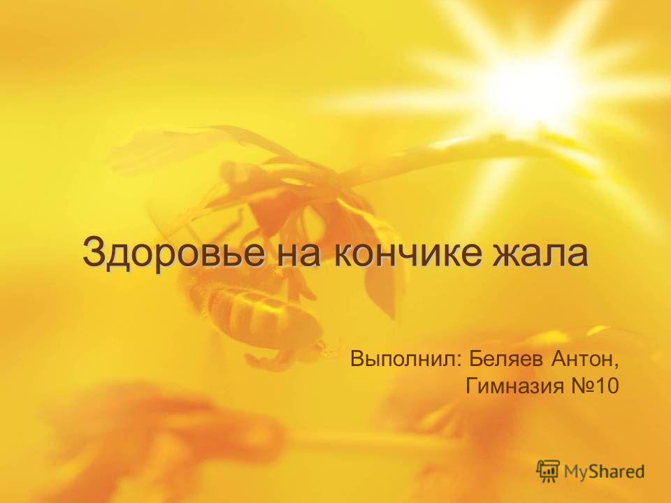 Здоровье на кончике жала Выполнил: Беляев Антон, Гимназия 10