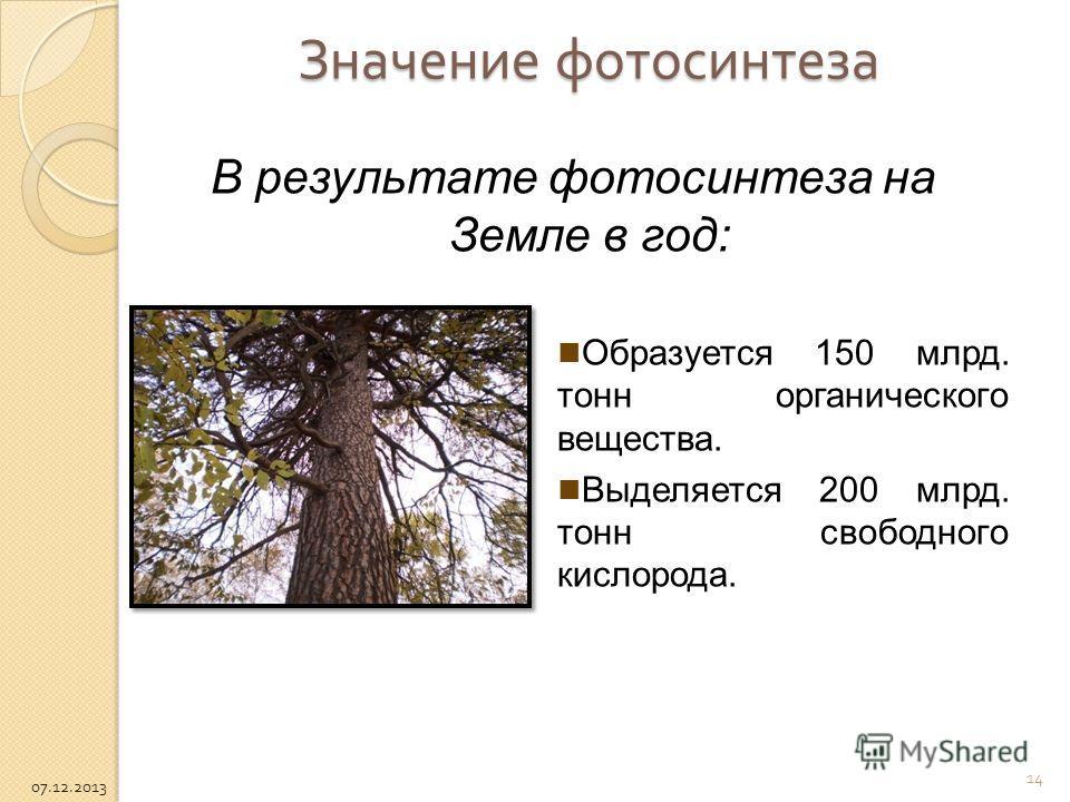 Значение фотосинтеза В результате фотосинтеза на Земле в год: Образуется 150 млрд. тонн органического вещества. Выделяется 200 млрд. тонн свободного кислорода. 14 07.12.2013