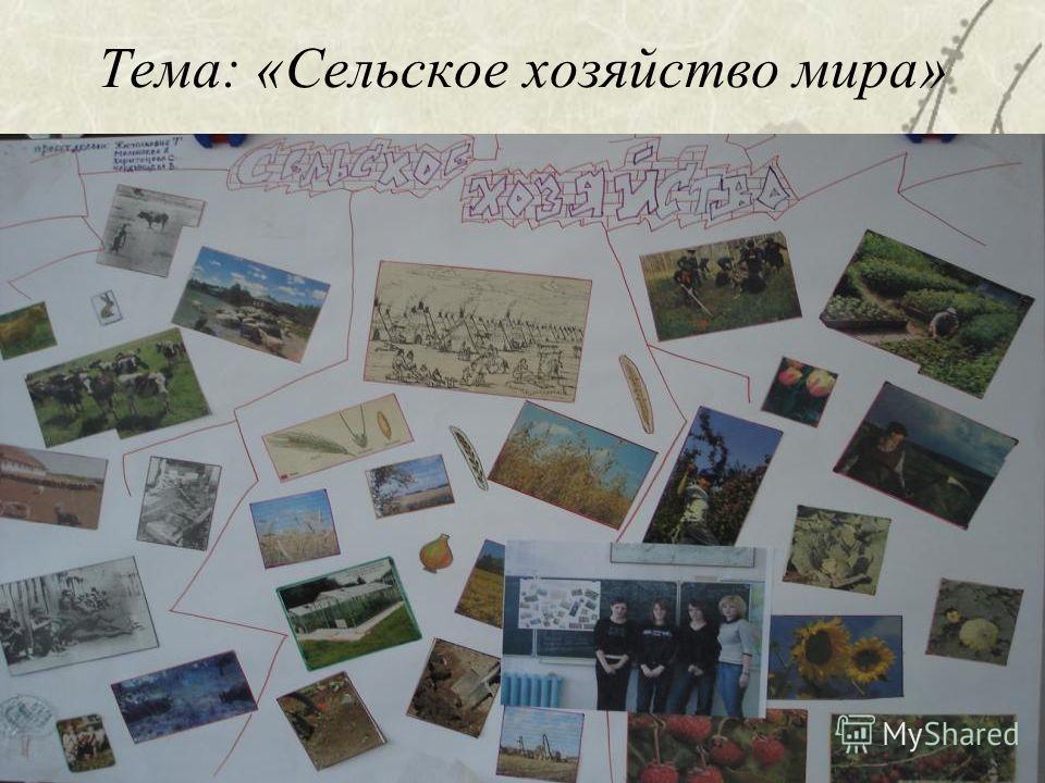 Тема: «Сельское хозяйство мира»
