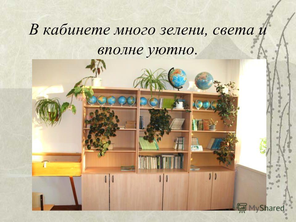 В кабинете много зелени, света и вполне уютно.