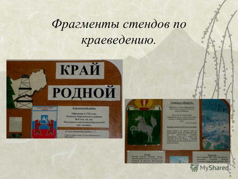 Фрагменты стендов по краеведению.