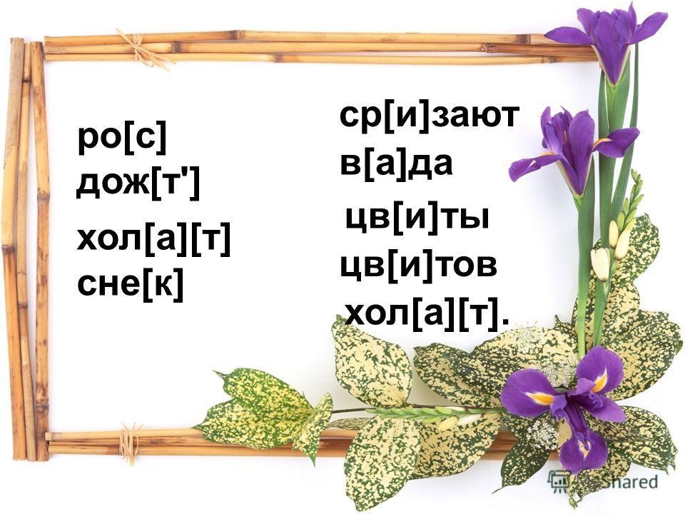 ро[с] дож[т'] ср[и]зают в[а]да цв[и]ты цв[и]тов хол[а][т]. хол[а][т] сне[к]
