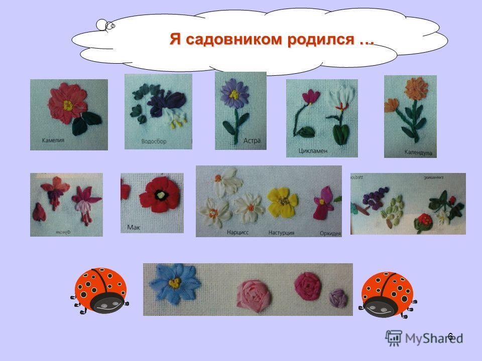 Я садовником родился … 6