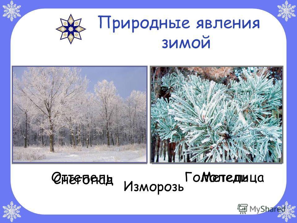 Февраль Февраль – «лютый», «снежень», «бокогрей». Месяц снегопадов, злых вьюг и первого тёплого солнца.