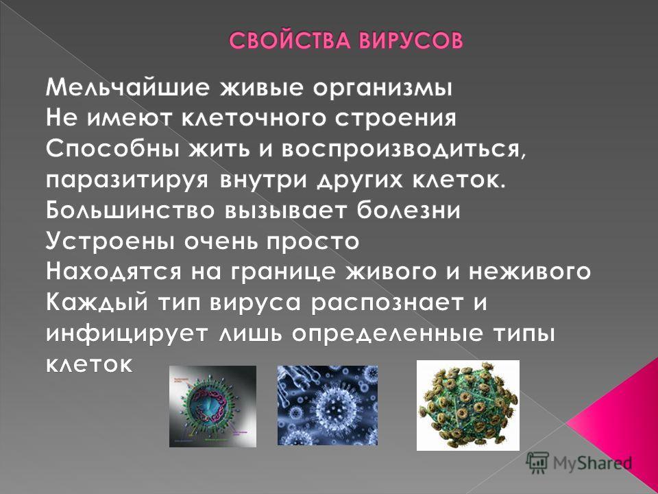 КЛАССИФИКАЦИЯ ВИРУСОВ ДЕЗОКСИВИРУСЫРИБОВИРУСЫ 1. ДНК двухнитчатая2. ДНК однонитчатая1. РНК двухнитчатая2. РНК однонитчатая 1.1. Кубический тип симметрии: 1.1.1. Без внешних оболочек: аденовирусы (см рис 3в) 1.1.2. С внешними оболочками: герпес-вирусы