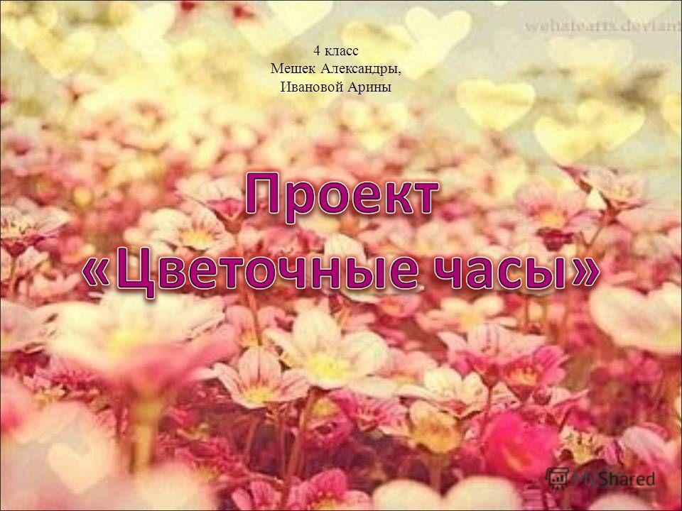 4 класс Мешек Александры, Ивановой Арины