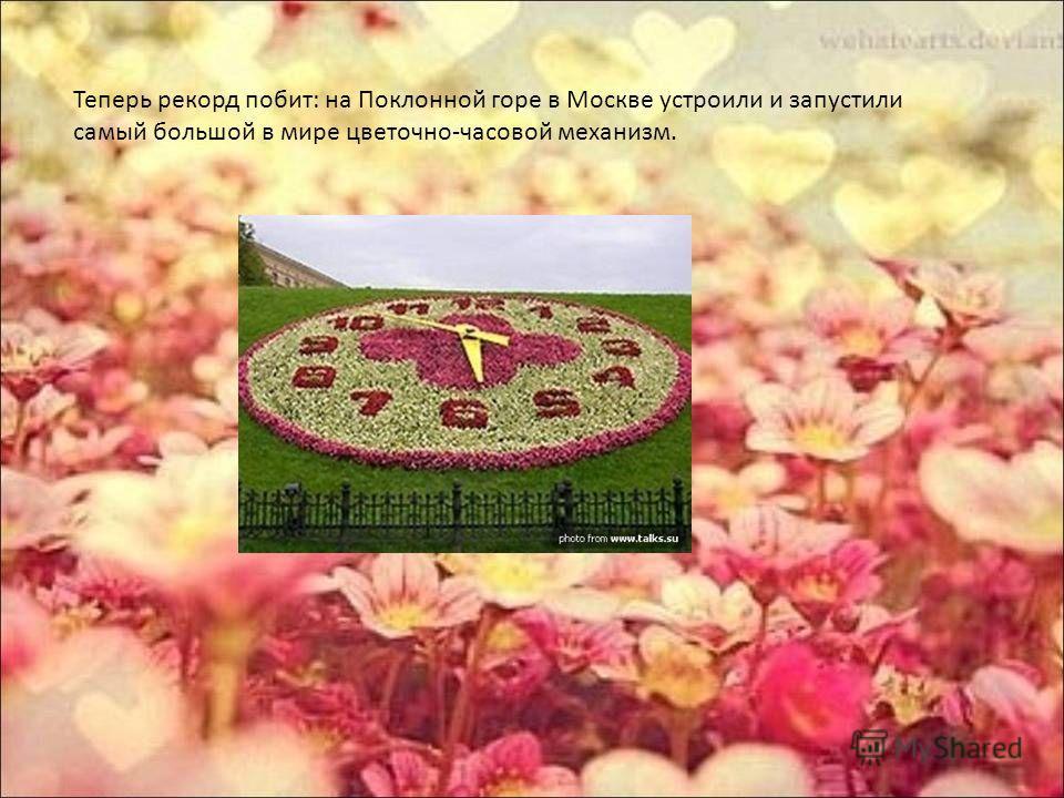 Теперь рекорд побит: на Поклонной горе в Москве устроили и запустили самый большой в мире цветочно-часовой механизм.