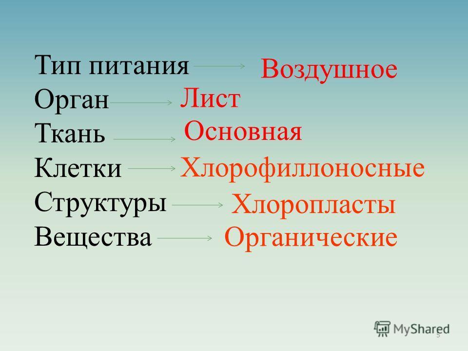 Тип питания Орган Ткань Клетки Структуры Вещества Воздушное Лист Основная Хлорофиллоносные Хлоропласты Органические 5
