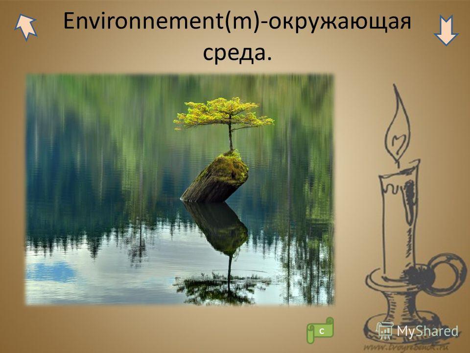 Environnement(m)-окружающая среда. с