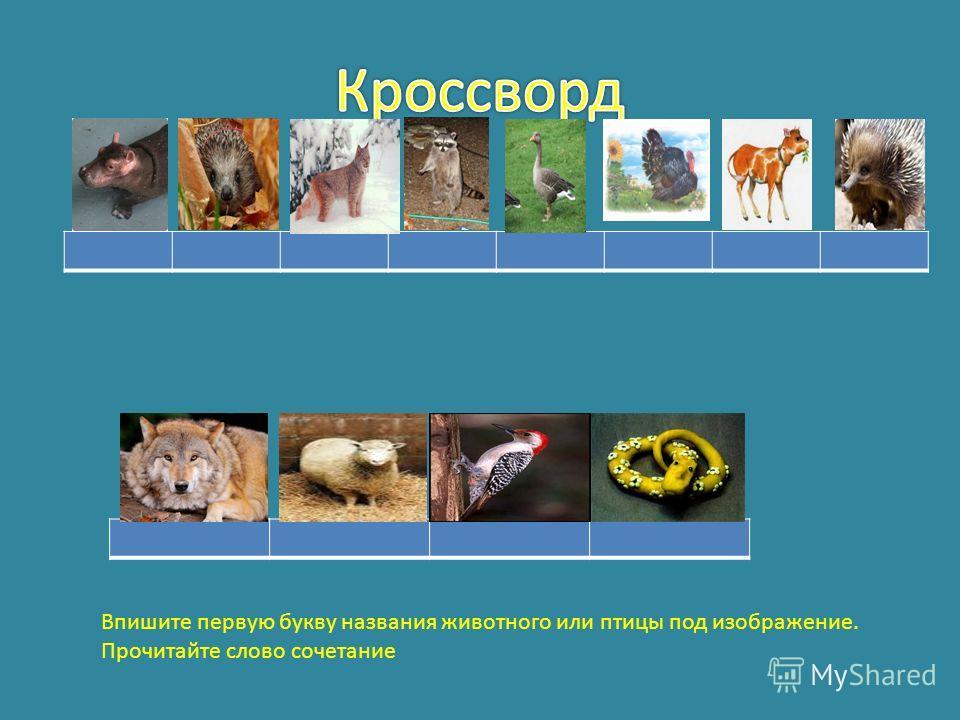 Впишите первую букву названия животного или птицы под изображение. Прочитайте слово сочетание