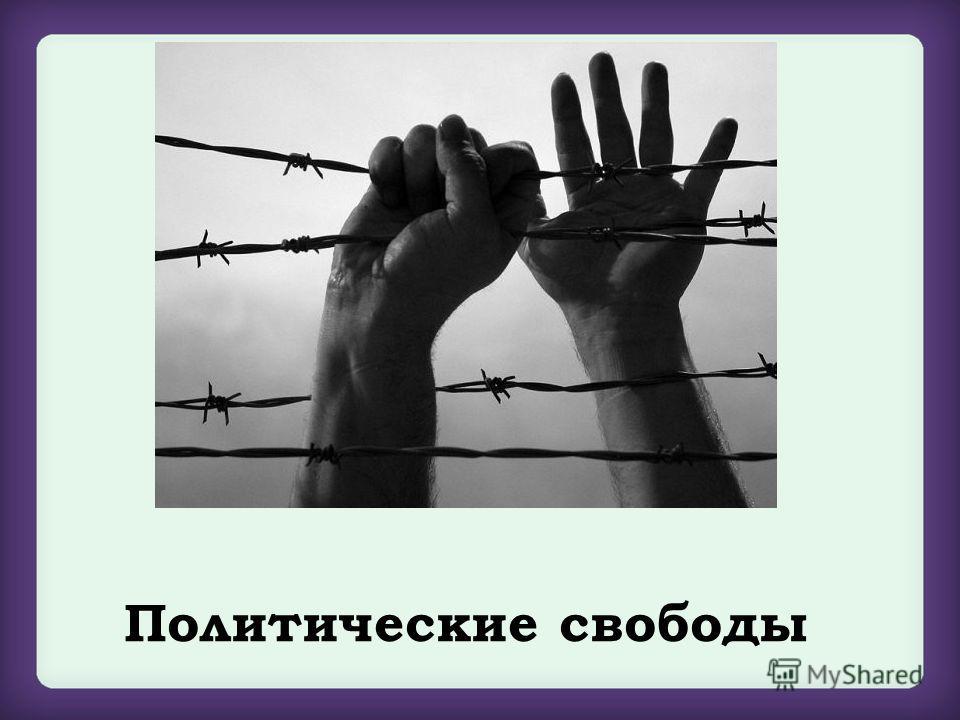 Политические свободы