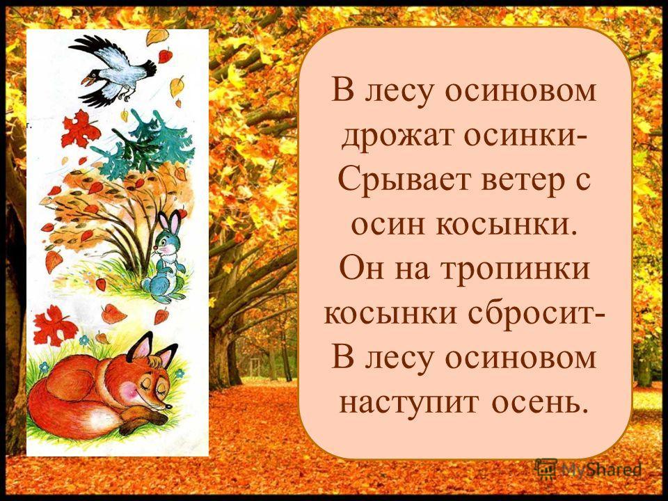 В лесу осиновом дрожат осинки- Срывает ветер с осин косынки. Он на тропинки косынки сбросит- В лесу осиновом наступит осень.