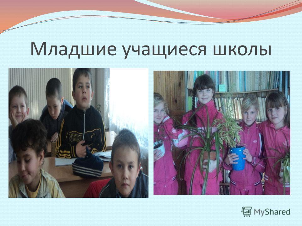 Младшие учащиеся школы
