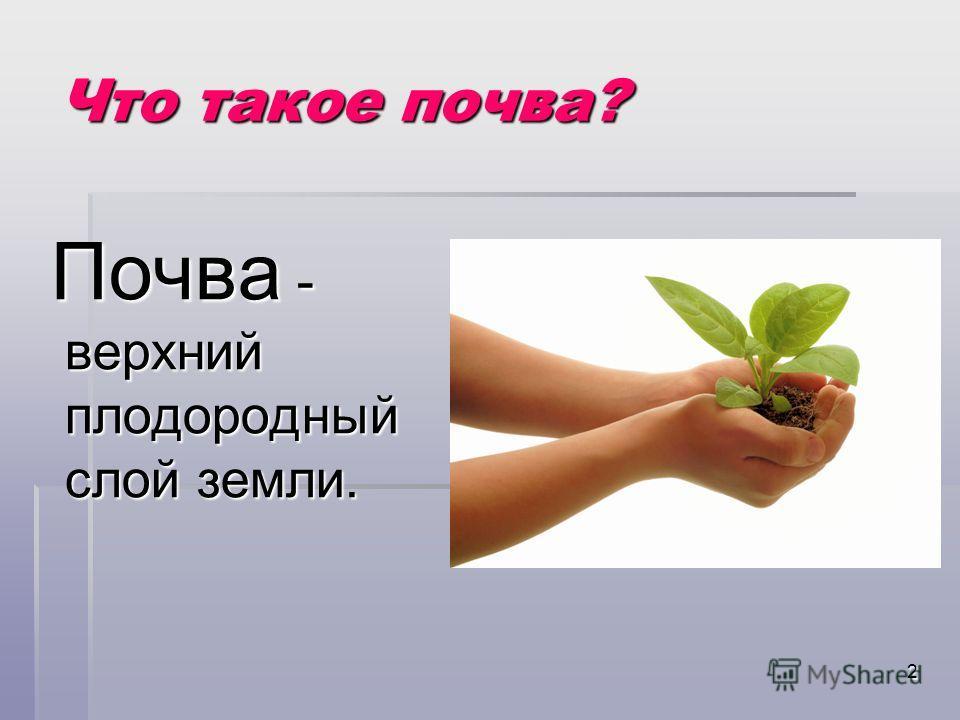 2 Что такое почва? Почва - верхний плодородный слой земли. Почва - верхний плодородный слой земли.