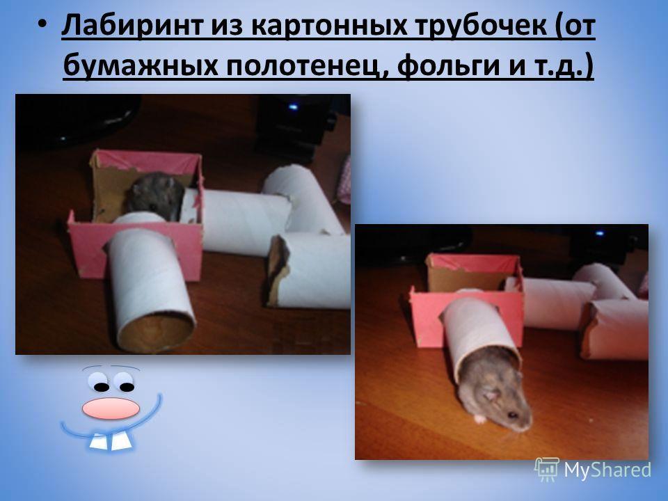 Лабиринт из картонных трубочек (от бумажных полотенец, фольги и т.д.)