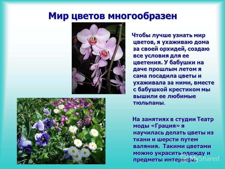 Мир цветов многообразен Чтобы лучше узнать мир цветов, я ухаживаю дома за своей орхидей, создаю все условия для ее цветения. У бабушки на даче прошлым летом я сама посадила цветы и ухаживала за ними, вместе с бабушкой крестиком мы вышили ее любимые т