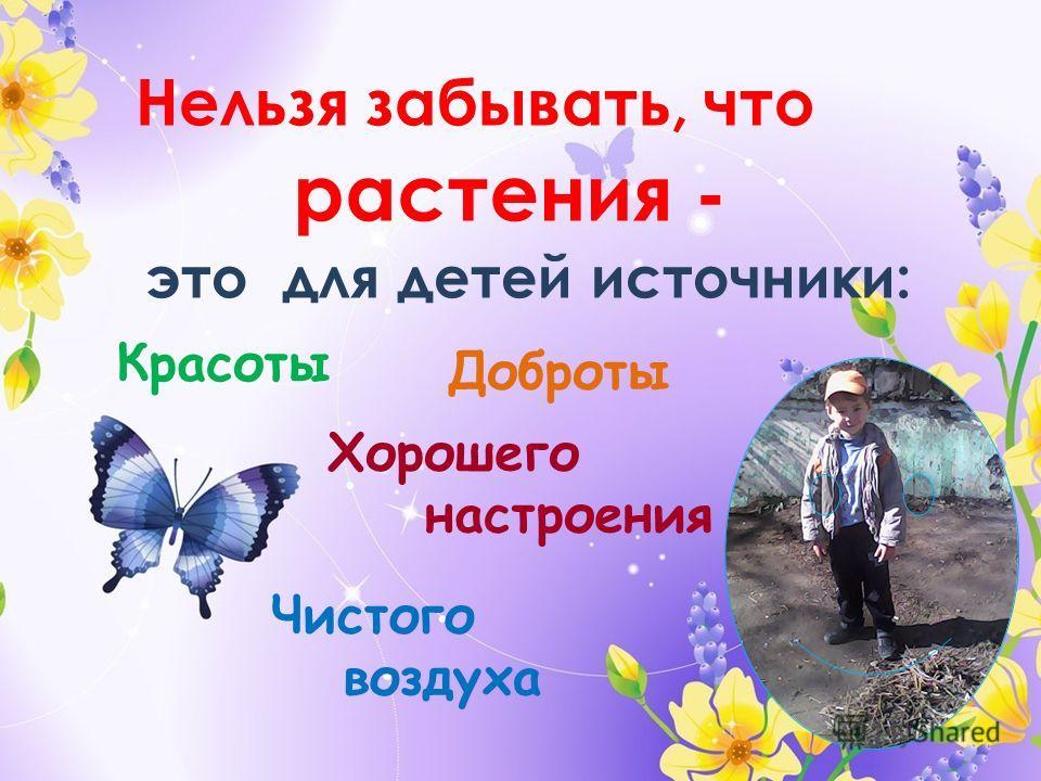 Нельзя забывать, что это для детей источники: Красоты Доброты Хорошего настроения Чистого воздуха растения -