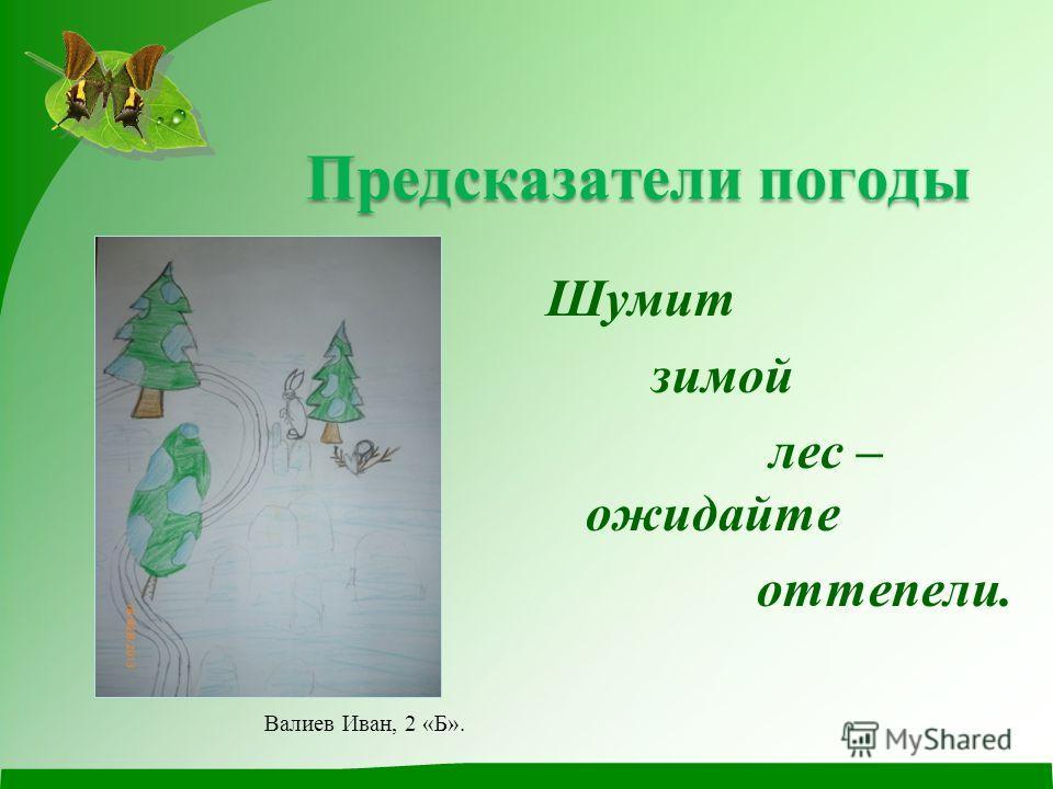 Предсказатели погоды Предсказатели погоды Шумит зимой лес – ожидайте оттепели. Валиев Иван, 2 «Б».