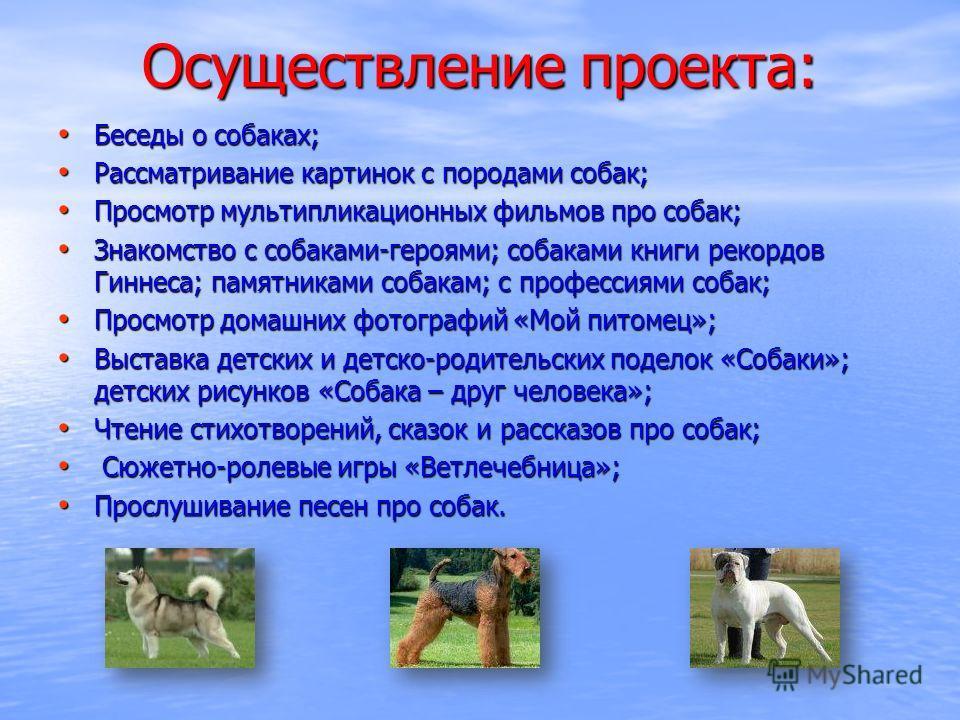 Осуществление проекта: Беседы о собаках; Беседы о собаках; Рассматривание картинок с породами собак; Рассматривание картинок с породами собак; Просмотр мультипликационных фильмов про собак; Просмотр мультипликационных фильмов про собак; Знакомство с