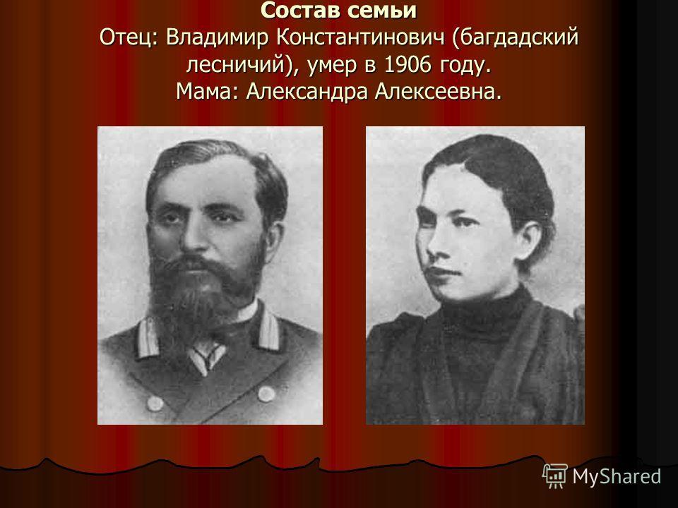Состав семьи Отец: Владимир Константинович (багдадский лесничий), умер в 1906 году. Мама: Александра Алексеевна.