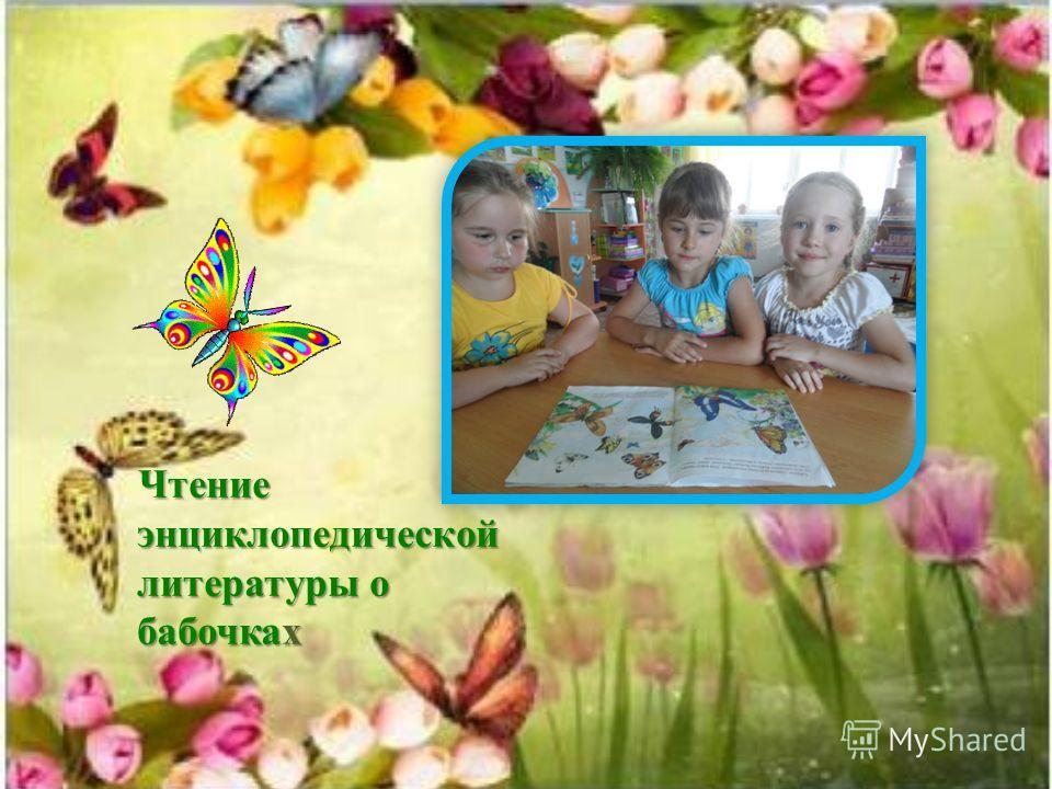 Изготовление макета появления бабочки с использованием макарон