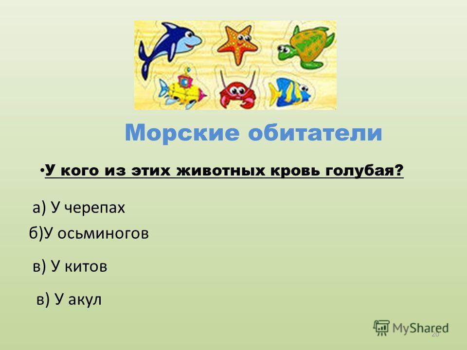 Морские обитатели У кого из этих животных кровь голубая? б)У осьминогов а) У черепах в) У китов в) У акул 20