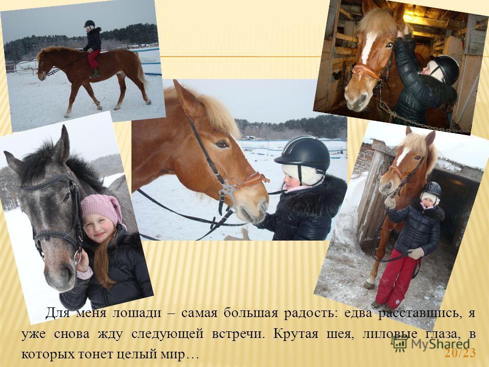 20/23 Для меня лошади – самая большая радость: едва расставшись, я уже снова жду следующей встречи. Крутая шея, лиловые глаза, в которых тонет целый мир…