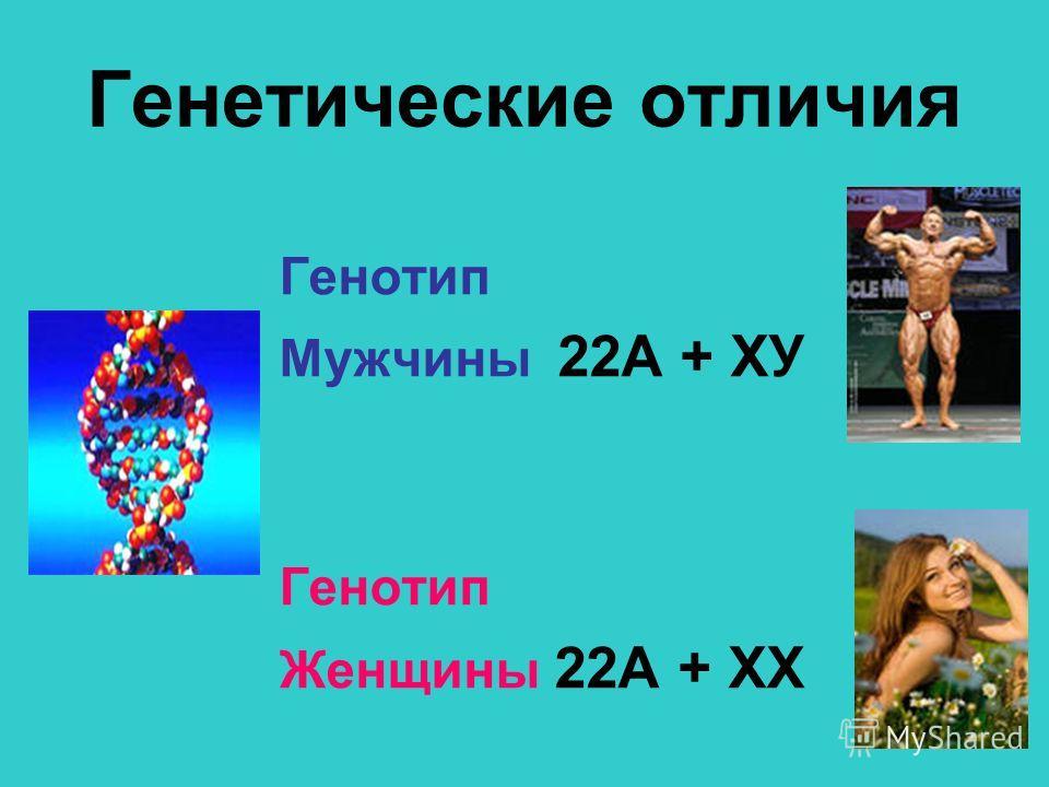 Генетические отличия Генотип Мужчины 22А + ХУ Генотип Женщины 22А + ХХ