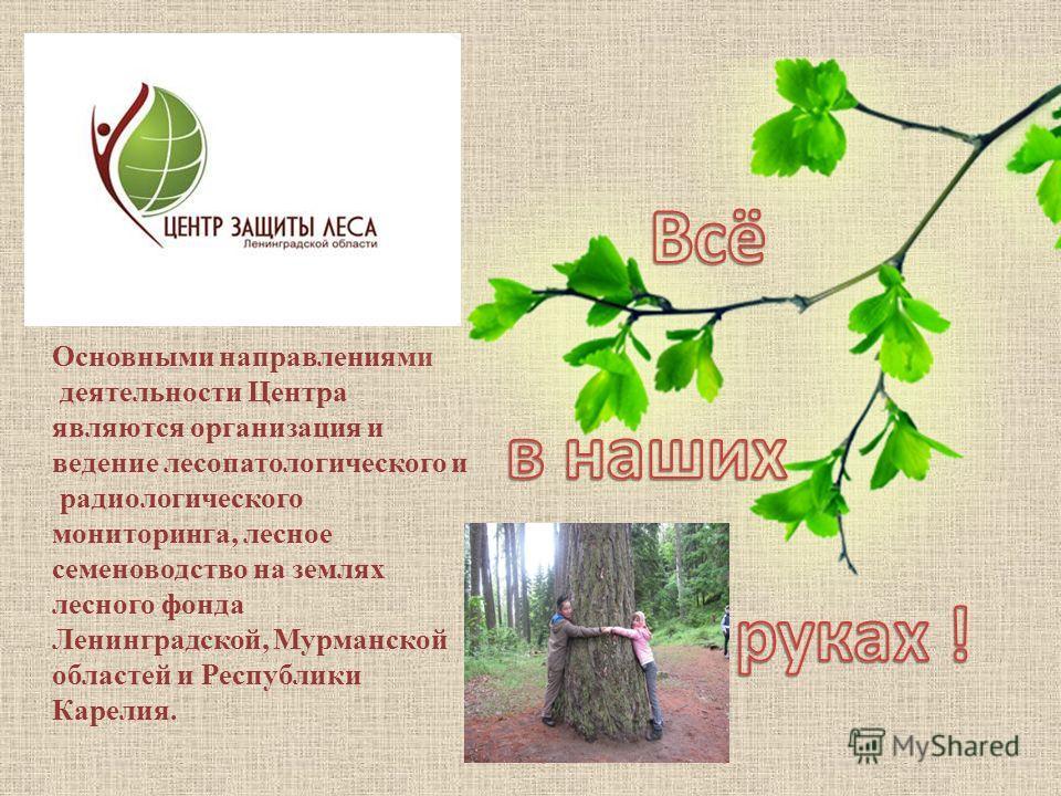 Основными направлениями деятельности Центра являются организация и ведение лесопатологического и радиологического мониторинга, лесное семеноводство на землях лесного фонда Ленинградской, Мурманской областей и Республики Карелия.