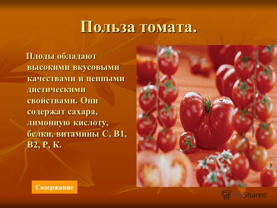 Польза томата. Плоды обладают высокими вкусовыми качествами и ценными диетическими свойствами. Они содержат сахара, лимонную кислоту, белки, витамины С, В1, В2, Р, К. Плоды обладают высокими вкусовыми качествами и ценными диетическими свойствами. Они