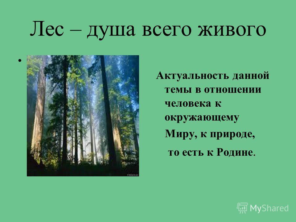 Лес – душа всего живого.. Актуальность данной темы в отношении человека к окружающему Миру, к природе, то есть к Родине.