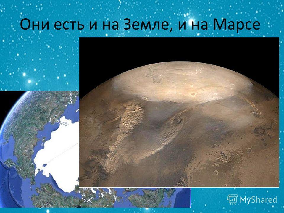 Они есть и на Земле, и на Марсе