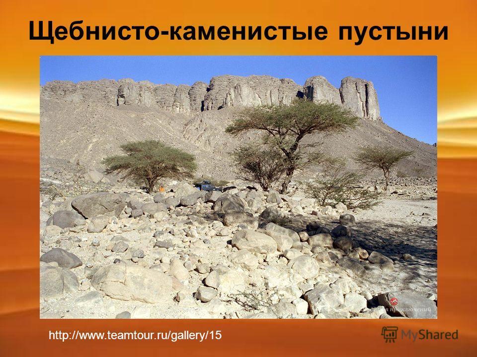 Щебнисто-каменистые пустыни http://www.teamtour.ru/gallery/15
