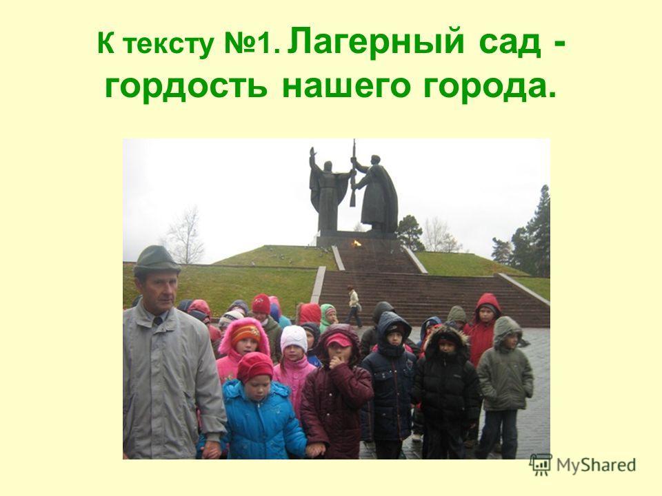 К тексту 1. Лагерный сад - гордость нашего города.