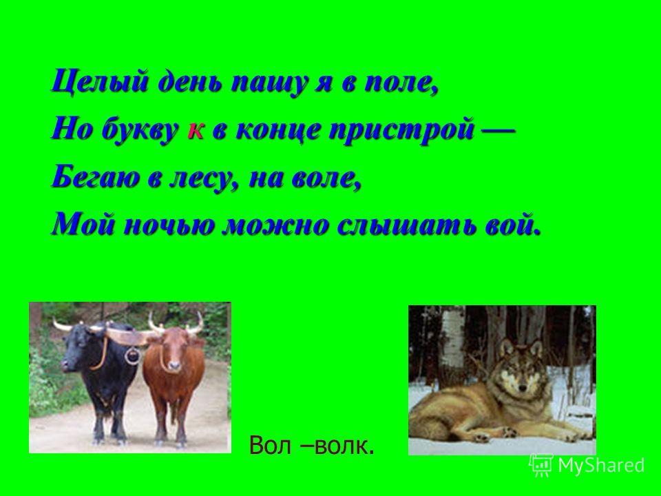 Целый день пашу я в поле, Но букву к в конце пристрой Но букву к в конце пристрой Бегаю в лесу, на воле, Мой ночью можно слышать вой. Вол –волк.