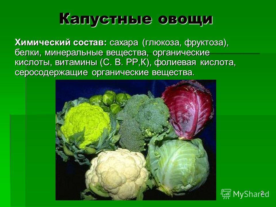 Капустные овощи Химический состав: сахара (глюкоза, фруктоза), белки, минеральные вещества, органические кислоты, витамины (С. В. РР,К), фолиевая кислота, серосодержащие органические вещества. 2