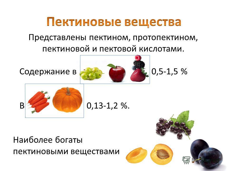 Представлены пектином, протопектином, пектиновой и пектовой кислотами. Содержание в 0,5-1,5 % В 0,13-1,2 %. Наиболее богаты пектиновыми веществами