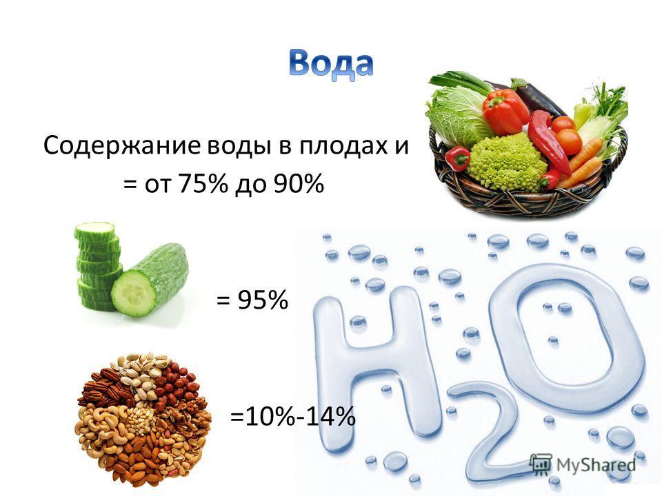 Содержание воды в плодах и = от 75% до 90% = 95% =10%-14%