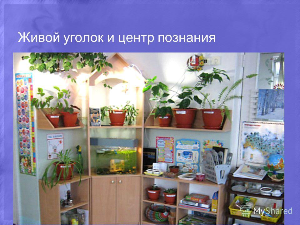 Живой уголок и центр познания
