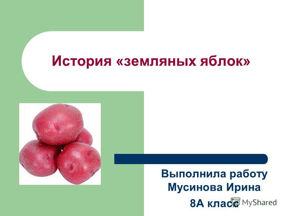 История «земляных яблок» Выполнила работу Мусинова Ирина 8А класс