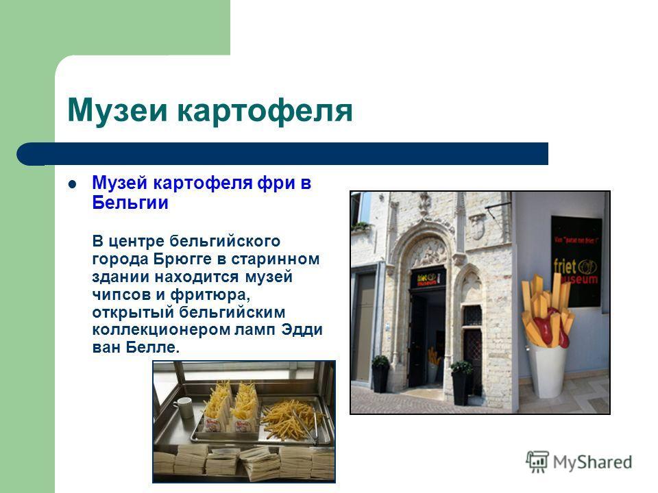Музеи картофеля Музей картофеля фри в Бельгии В центре бельгийского города Брюгге в старинном здании находится музей чипсов и фритюра, открытый бельгийским коллекционером ламп Эдди ван Белле.