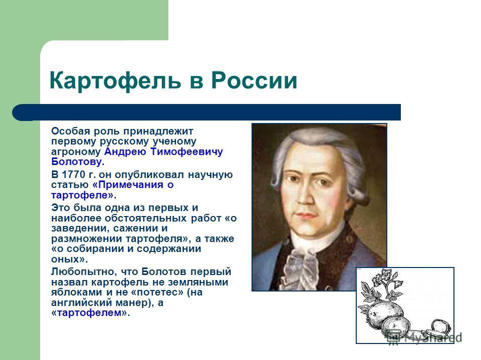 Картофель в России Особая роль принадлежит первому русскому ученому агроному Андрею Тимофеевичу Болотову. В 1770 г. он опубликовал научную статью «Примечания о тартофеле». Это была одна из первых и наиболее обстоятельных работ «о заведении, сажении и