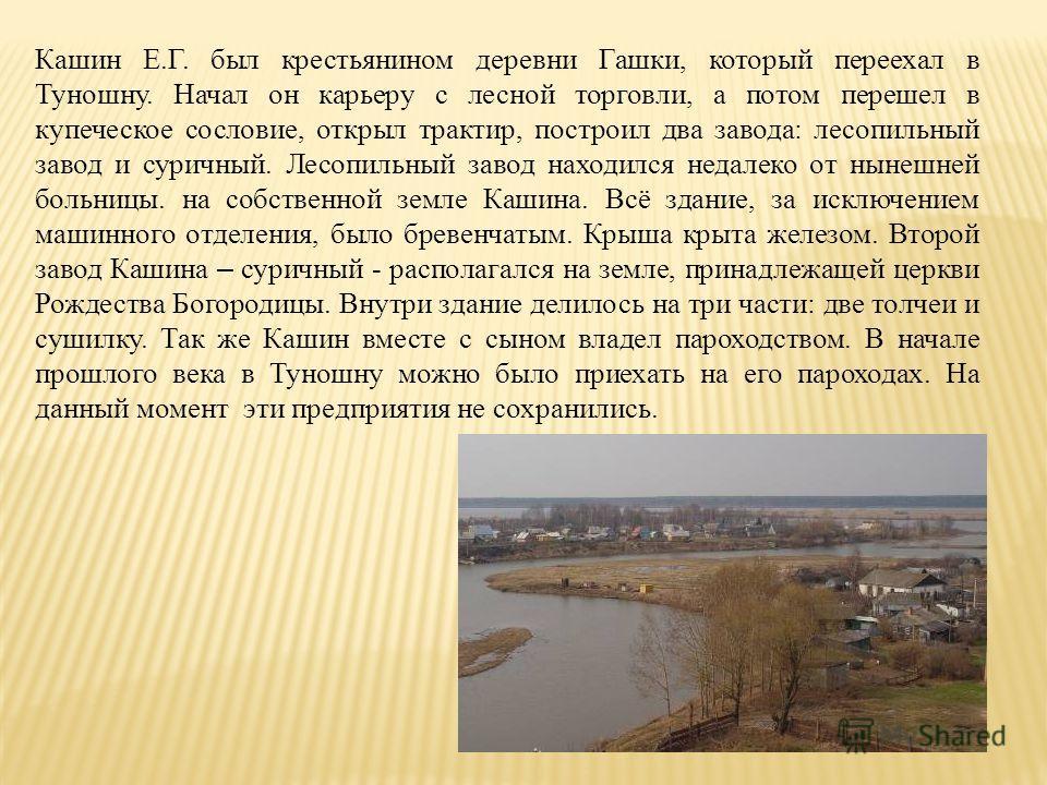 Кашин Е.Г. был крестьянином деревни Гашки, который переехал в Туношну. Начал он карьеру с лесной торговли, а потом перешел в купеческое сословие, открыл трактир, построил два завода: лесопильный завод и суричный. Лесопильный завод находился недалеко
