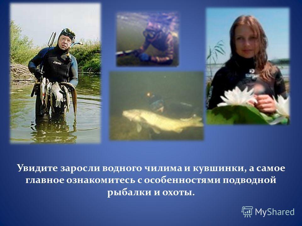 Увидите заросли водного чилима и кувшинки, а самое главное ознакомитесь с особенностями подводной рыбалки и охоты.